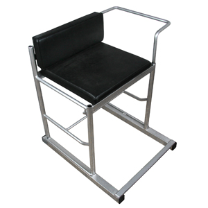 20-WS1 Seat for wheelchair fencing frame